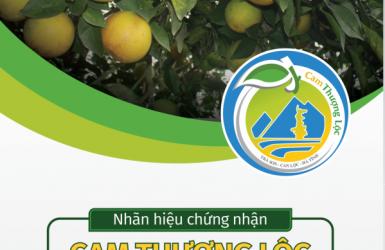 """Cam Thượng Lộc - """"Ăn"""" là nhớ cả đời!"""